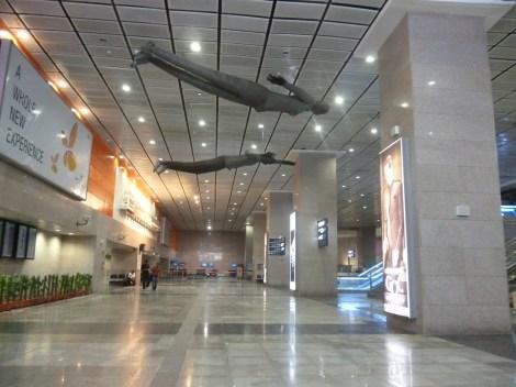 Aeropuerto, Delhi