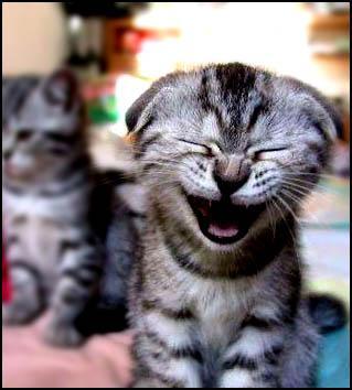 La risa, una terapia infalible