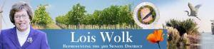 Lois Wolk banner