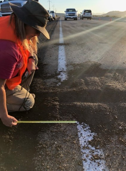 Photo of DOC scientist with a ruler measuring the lateral displacement of surface rupture of the roadway caused by the Ridgecrest earthquake