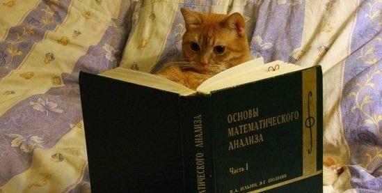 Математический анализ I
