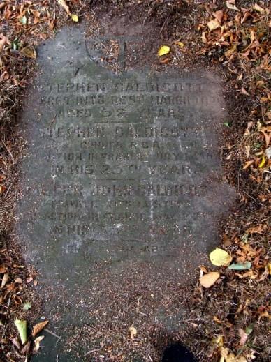 CALDICOTT Stephen b1891 - Grave
