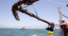 Anchor from Blackbeard's ship raised after 293 years off North Carolina coast