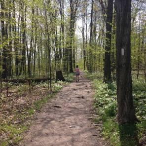 Springtime on the trail