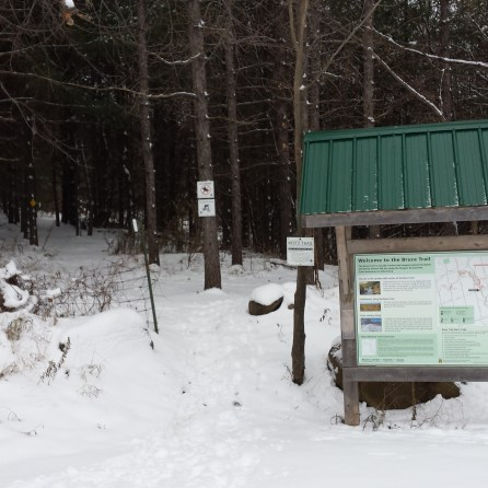 Winter Trail Head