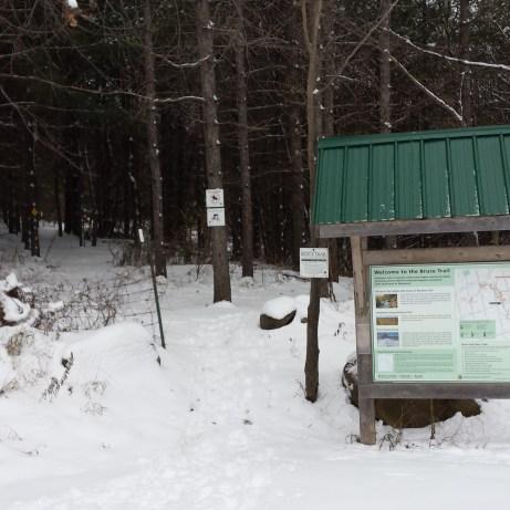 Winter Trail Head