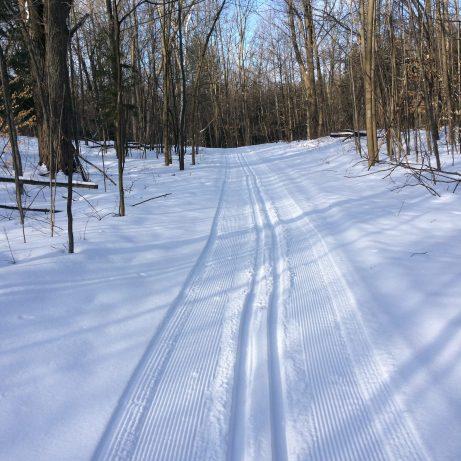 The ski trail beckons ...