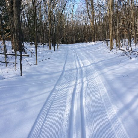 The ski trail beckons ...