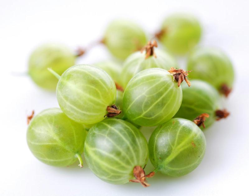 Le Fruit Groseille Maquereau Proprits Et Bienfaits