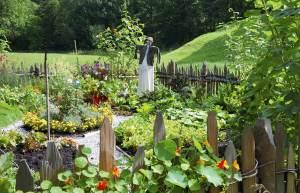 calendrier lunaire votre jardin potager bio