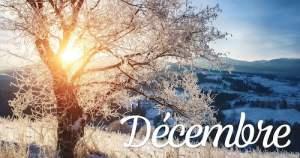 calendrier lunaire - jardiner avec la lune 2020 - decembre
