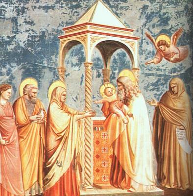 La présentation au Temple - Giotto