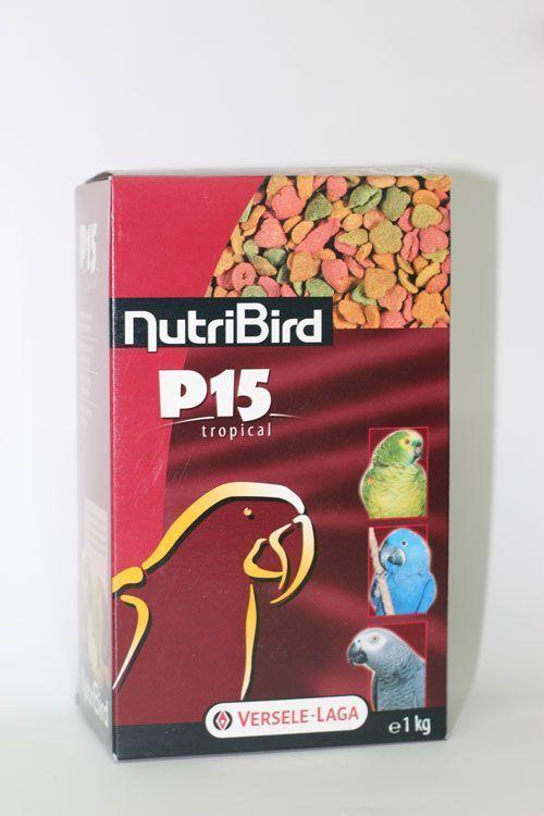 Especialización Comida Tropical para Pájaros