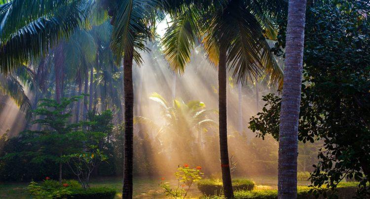 Spiritual-Experience
