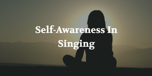 Self-Awareness in Singing