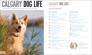 dog mag calgary - advertising calgary - dog publications