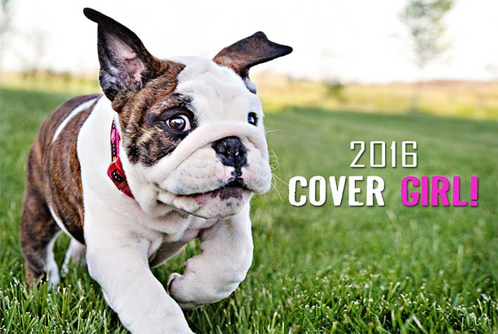 Off-Leash Park Guide Cover Model Winner!