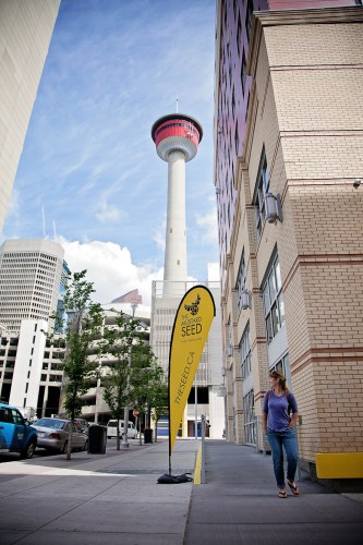 calgary-dog-event-mustard-seed-vets-2-go