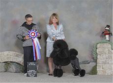 THUMB Dogshowphoto1