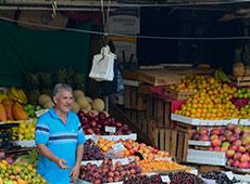 nidia market2 thumb