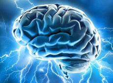 Brain power copy