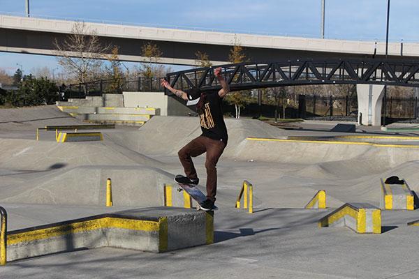 Skateboarder Shaw Millennium Park-web