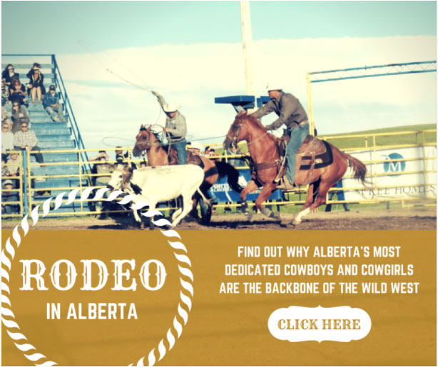 abrodeo