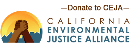Donate-to-CEJA-Transparent3