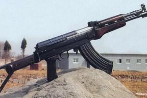 Norinco Type 81