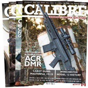 Calibre subscription