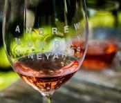 Andrew Murray rose wine