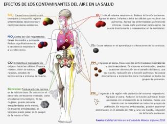 EFECTOS_CONTAMINANTES_SALUD