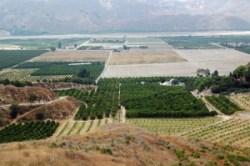 California Farm Landscape, Environment
