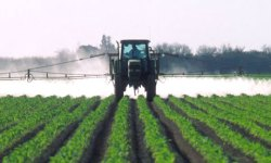 IR-4 on Process and Trends of Biopesticides