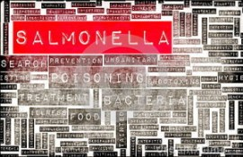 salmonella-food-poisoning-concept-awareness-prevention-33467602