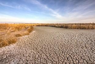 california drought fallow land