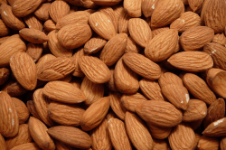 Average Almond Crop for Van Groningen