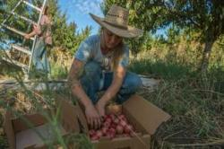 Young Women Changing the Face of California Farming