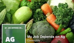 MY JOB DEPENDS ON AG Broadens Ag Community on Facebook