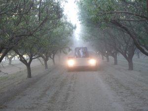Nut_Harvest_Safety_2