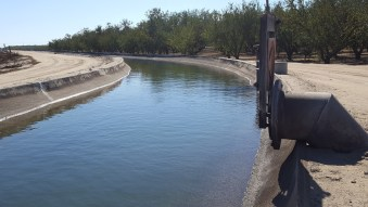 turlock irrigation canal