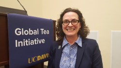 Katharine Burnett, Director of East Asian Studies Program at UC Davis and Faculty Director of the Global Tea Initiative, Speaks About the Future Tea Institute at UC Davis