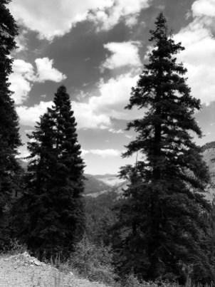 Wind-driven clouds in the CA Alps