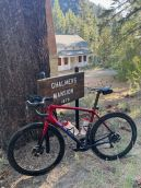 Blue at Chalmers - taking a little break as we headed up towards Ebbett's Pass.