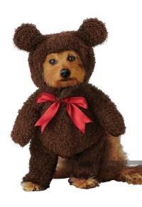 TEDDY BEAR / DOG COSTUME