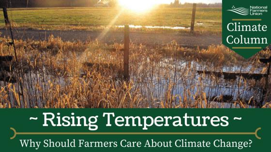 Climate Column - Rising Temperatures