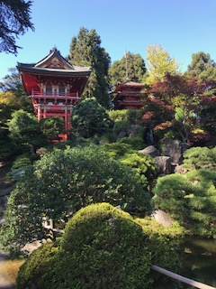 Japanese Tea Garden views