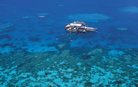 A Guide to Australia's Great Barrier Reef