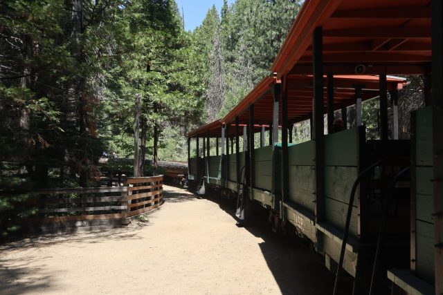 Yosemite Mountain Sugar Pine Railway railroad cars with a forest backdrop