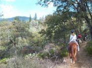 Region 18 Royalty Poker Ride On the Weaver Basin Trail